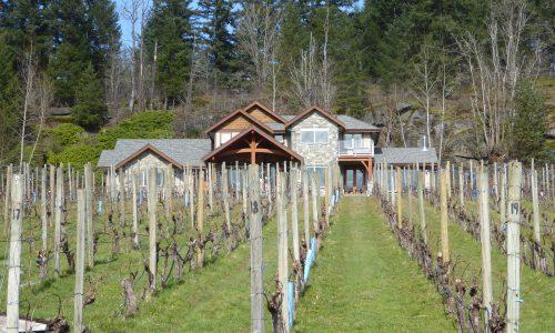 Vignoble de l'île de Vancouver