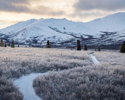 Territoires du Yukon