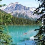 Paysage forêt, fleuve et montagnes