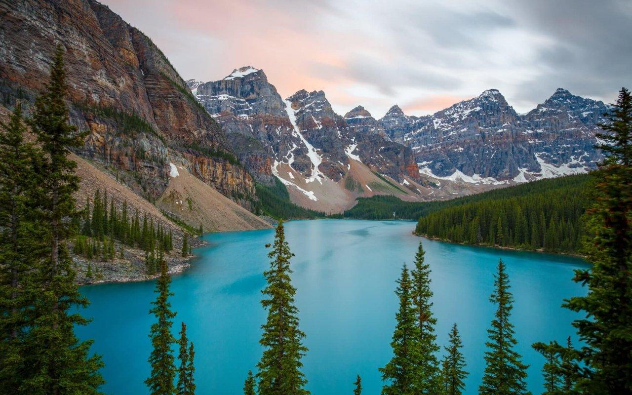 Vue forêt, lac et montagnes