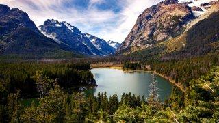 Paysage montagnes, lac et forêt
