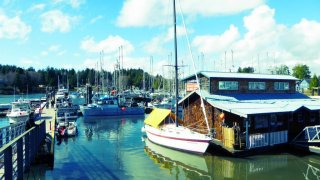 Port avec bateaux